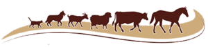 chisholm-trail-veterinary-clinic-lockhart-texas-logo-icons-only copy