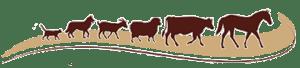 chisholm-trail-veterinary-clinic-lockhart-texas-logo-icons-only copy